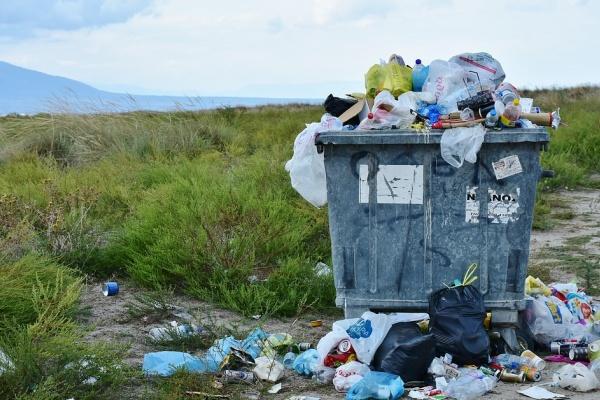 Жители Ельца возмутились работой регионального оператора «Тэко Сервис» из Тамбова, отвечающего за вывоз мусора