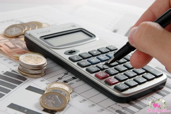 Бюджет Липецка из-за теневой занятости населения ежегодно недобирает 1,2 млрд рублей