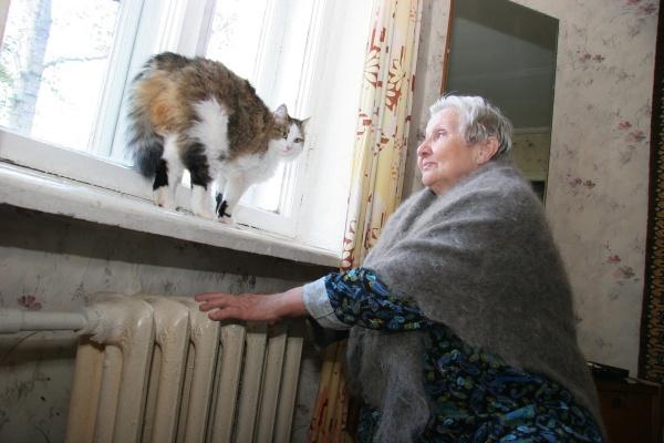 Мёрзнувшие четыре года в квартирах старики и инвалиды обратились за помощью в организацию Владимира Путина