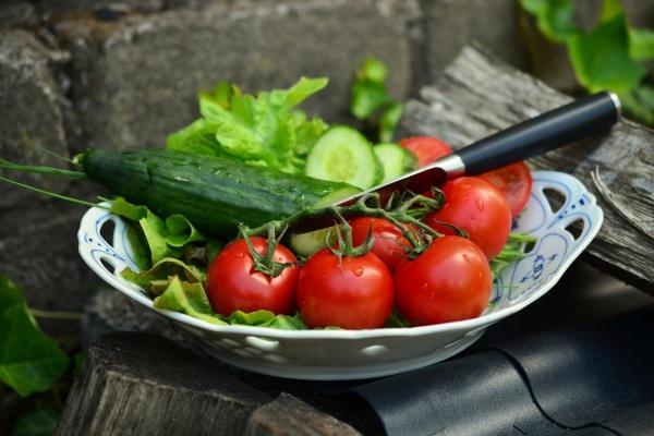Овощеводы продвинули Липецкую область в лидеры по производству тепличных огурцов и томатов