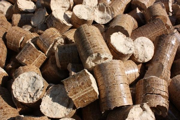 Завод по производству древесных гранул заработал в Липецкой области