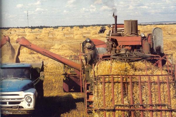 Государство проведет ревизию в сельском хозяйстве