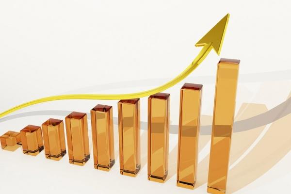 Черноземная группа «Черкизово» в первом полугодии смогла увеличить чистую прибыль на 70%