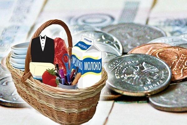 Прожиточный минимум в Липецкой области во втором квартале подрос на 4%