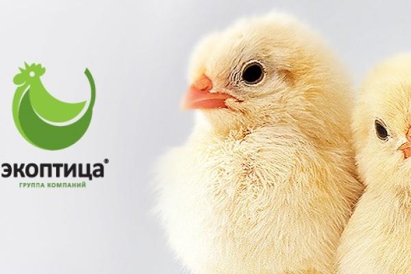Экоптица липецк официальный сайт вакансии