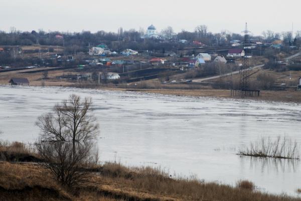 На расчистку реки Воронеж будет потрачено 137 млн. рублей