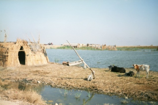 В России начали высыхать реки