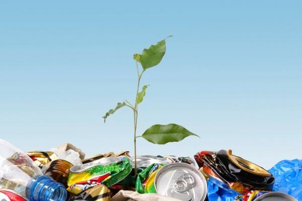 Инвестиции региональных операторов в переработку отходов в Липецкой области могут составить 10 млрд рублей