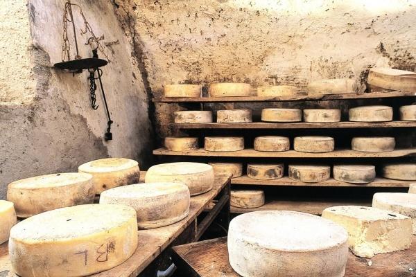 В Липецкой области строительство французской сыродельни законсервировано из-за недостатка средств
