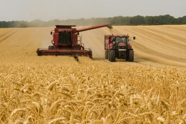 Правительство обделило Липецкую область федеральными субсидиями на покупку дизельного топлива