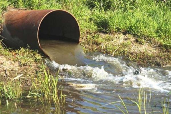 Липецкие предприятия наносят вред экологии региона