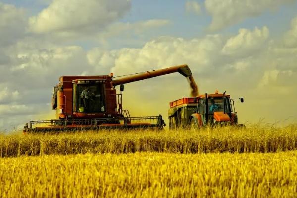 Тамбовские хлеборобы собрали первый миллион тонн зерна