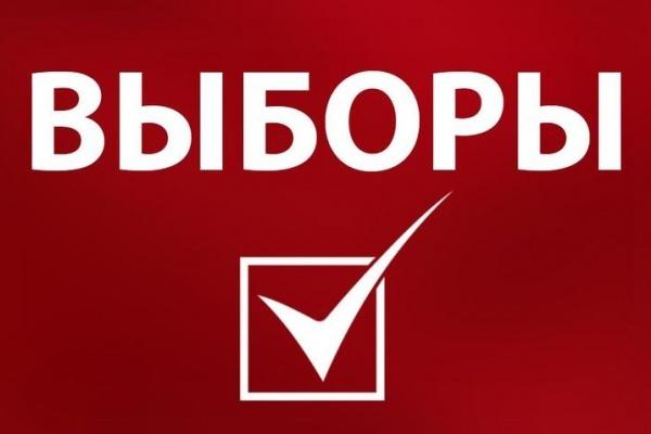Первый кандидат в губернаторы Липецкой области сдал документы в облизбирком