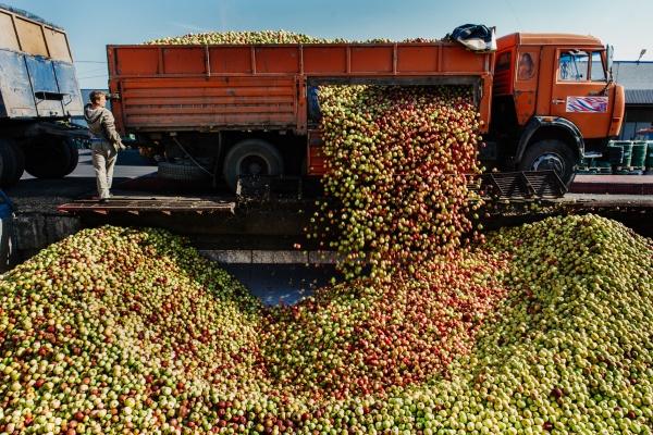 ОАО «Прогресс» в Липецке расширяет продуктовую линейку бренда «Фрутоняня»