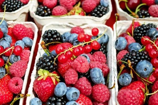 Липецкая «Фрагария» начала отгрузку первых замороженных ягод