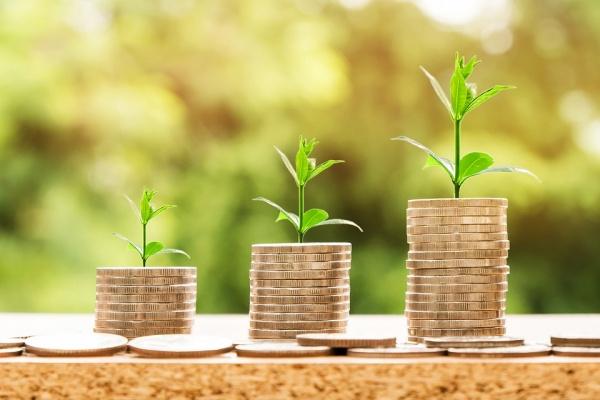 Липецкий губернатор озадачил главного финансиста региона подумать над повышением зарплаты «нужным» чиновникам