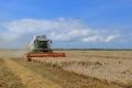 За 2019 год аграриям Черноземья выдали более 26 млрд рублей субсидий