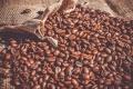 Липецкая кофейная компания готовится к открытию завода по обжарке кофе за 220 млн рублей