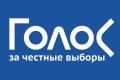 «Голос» рассказал о нарушениях на выборах президента России в Липецкой области