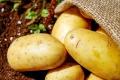 Столетнюю картофельную станцию в Липецкой области выставили на торги за 720 млн рублей