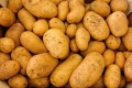 В продажу имущества столетней картофельной компании вмешалась липецкая прокуратура