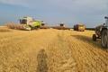 Лебедянские фермеры намерены отсудить у агрохолдинга материальный ущерб в размере порядка 60 млн рублей