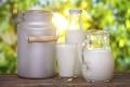 Липецкая компания «Ключи жизни» отложила строительство молочного комплекса из-за отсутствия средств