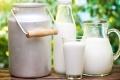 Липецкая область топчется внизу престижного рейтинга производителей молока