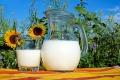 В Липецкой области производство молока пошло в гору