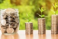 Липецкая агрофирма «Аврора» увеличила выручку в 2019 году до 5,7 млрд рублей