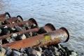 Липецкая прокуратура нашла управу на грубые экологические нарушения ООО «ЛТК «Свободный Сокол»