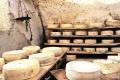 Липецкие сыроделы наладят поставки своей продукции в 400 люксовых ресторанов страны