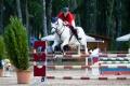 В Черноземье пройдут масштабные региональные соревнования по конкуру