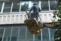 Липецкньюс «простимулировал» структуру мэрии избавить жителей дома от ос