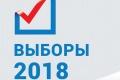 Липецкая область может не отличиться высокой явкой на президентских выборах в отличие от своих черноземных соседей